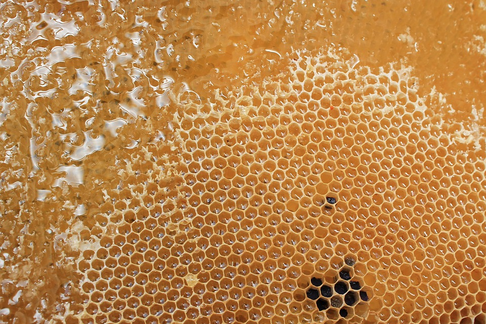 The Benefits Of Mad Honey