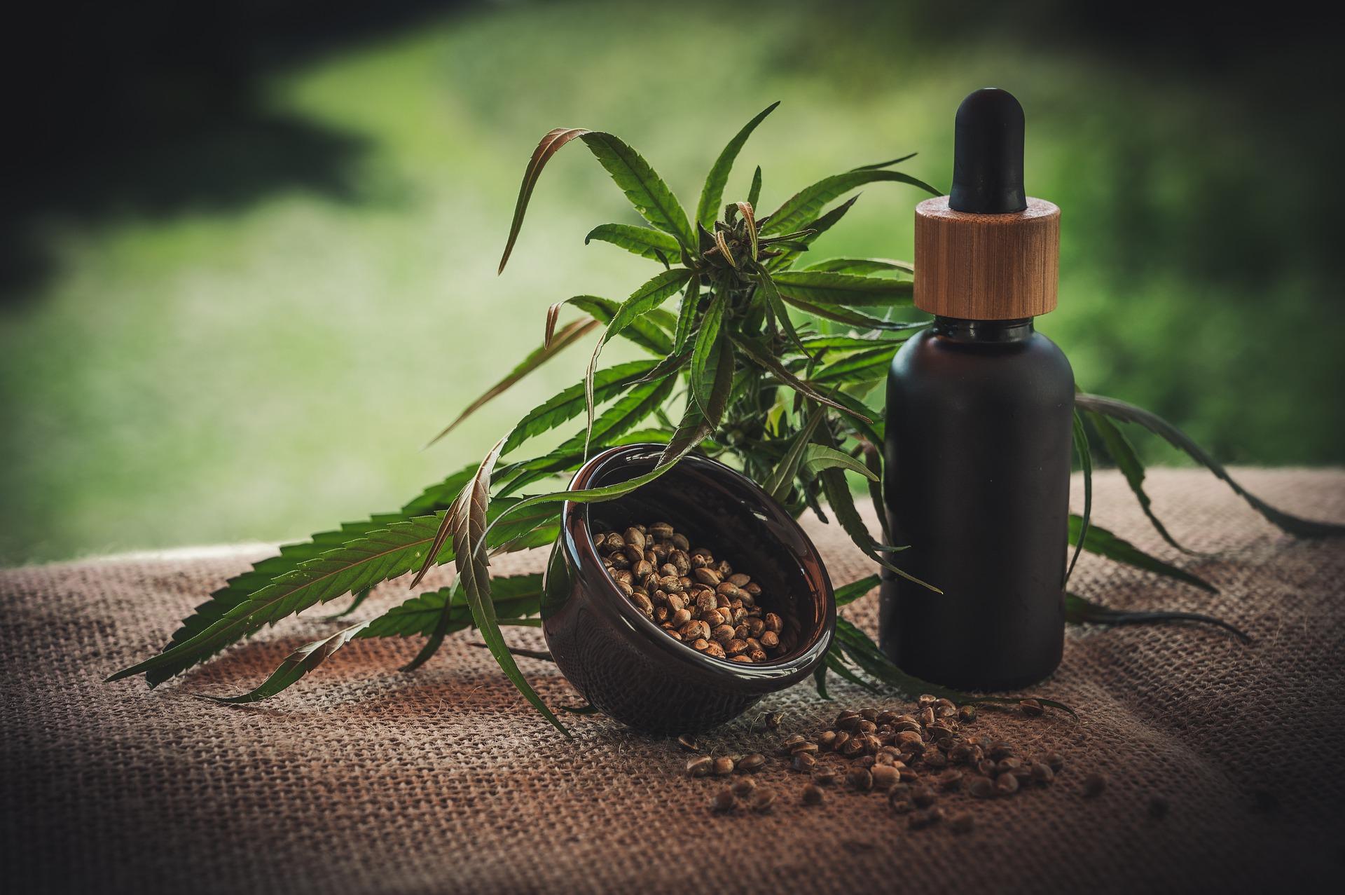 Ann Arbor Dispensary Menu- What To Consider When Taking Cannabis