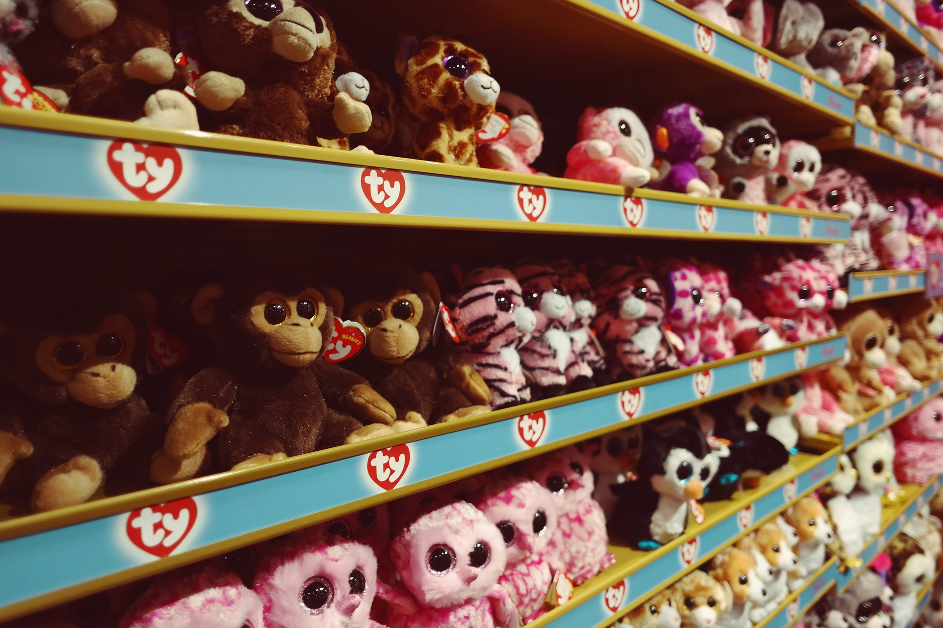 Why You Should Work With Toy Wholesale Distributors