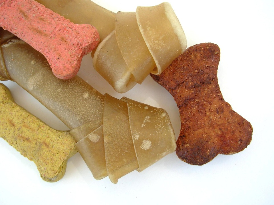 Buying Dog Products Online