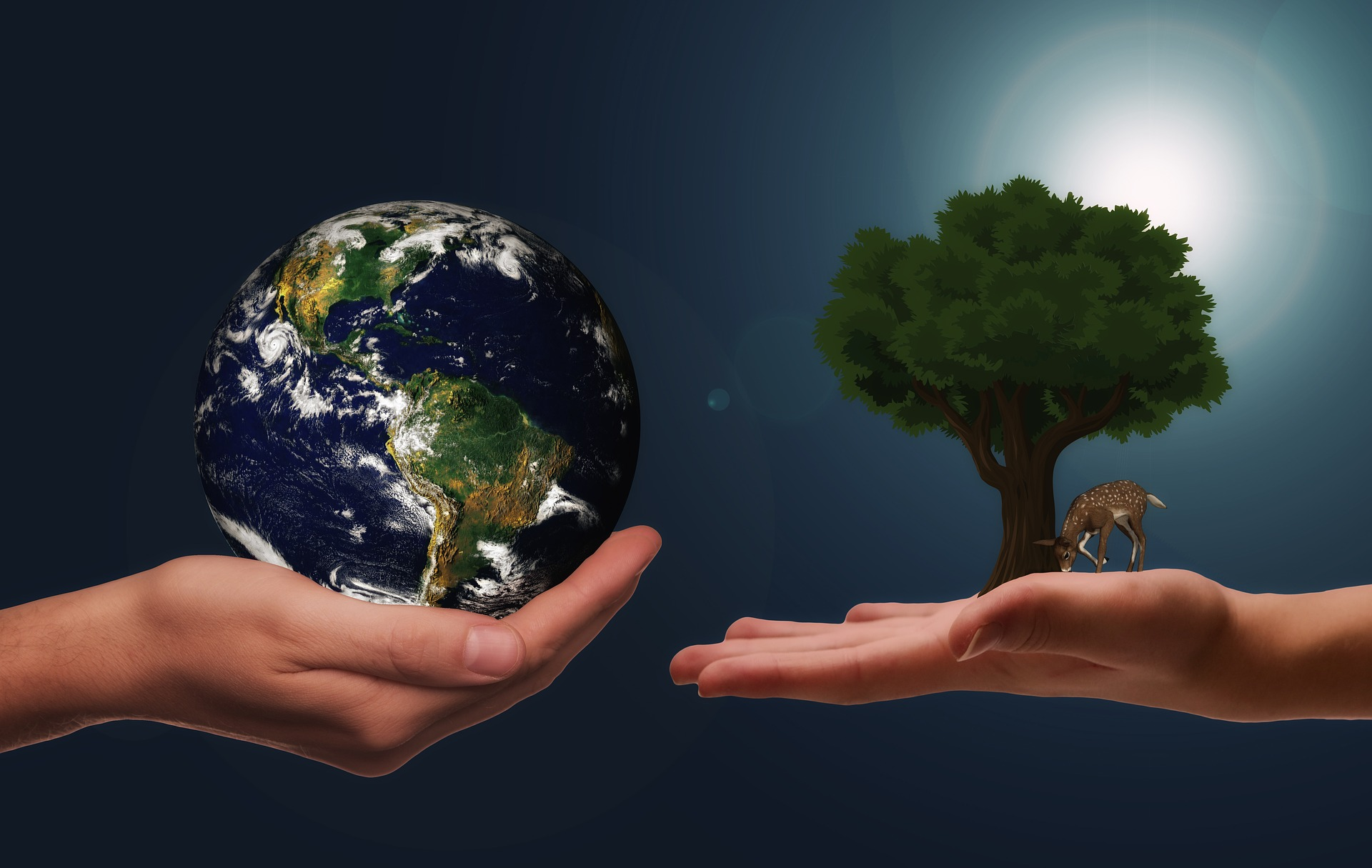 The Key To Sustainable Living