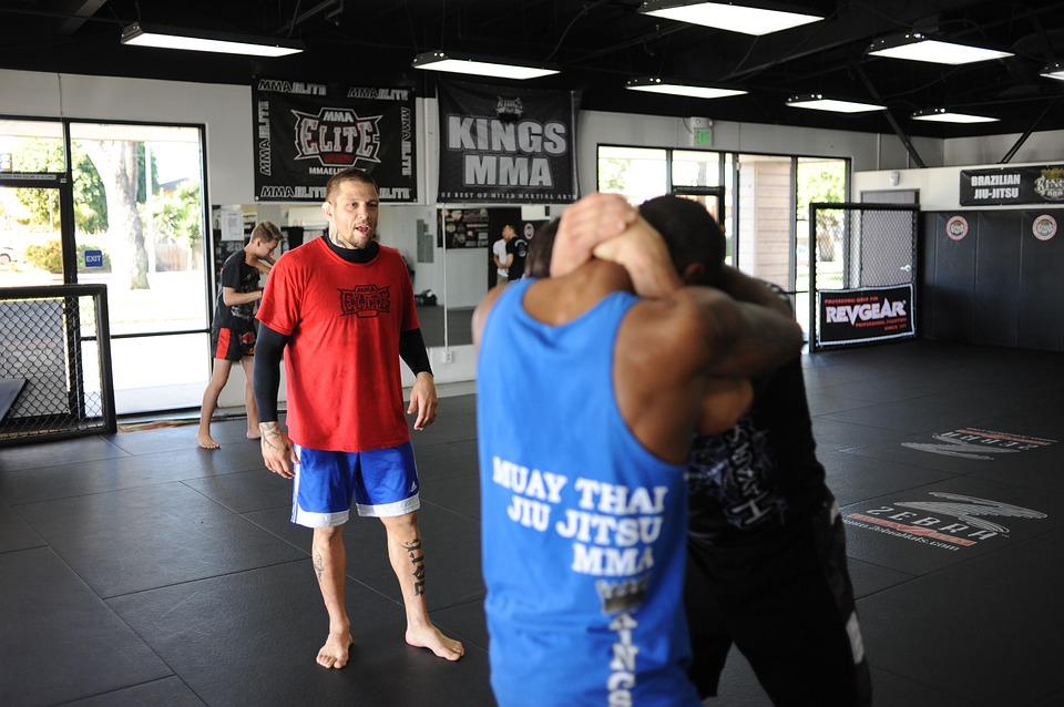 How Should People Proceed With Combat Sports Training?