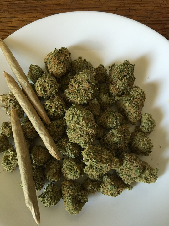 Wholesale Rolled Cones Online