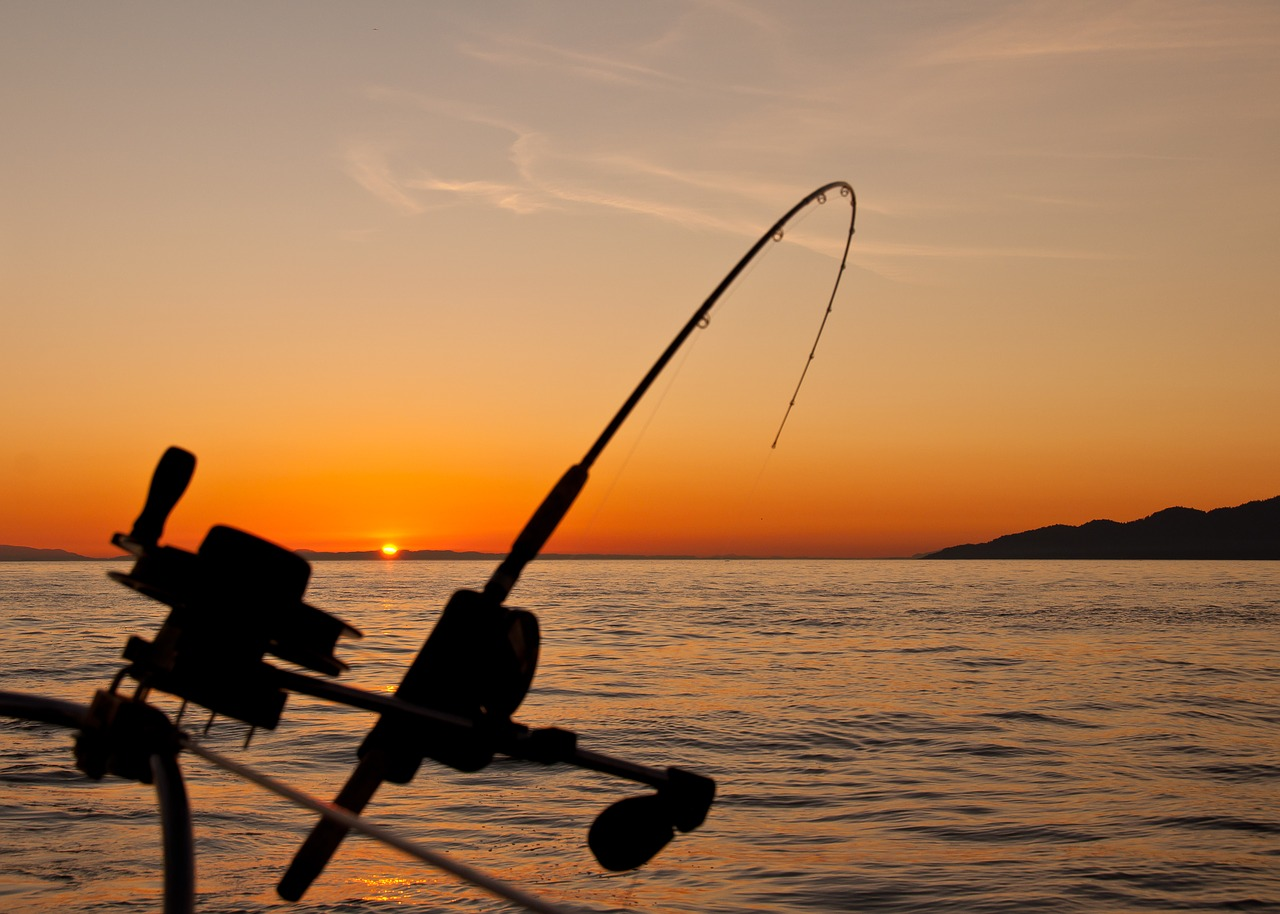 Jaco Costa Rica Fishing – The Perfect Way To Relax And Rejuvenate