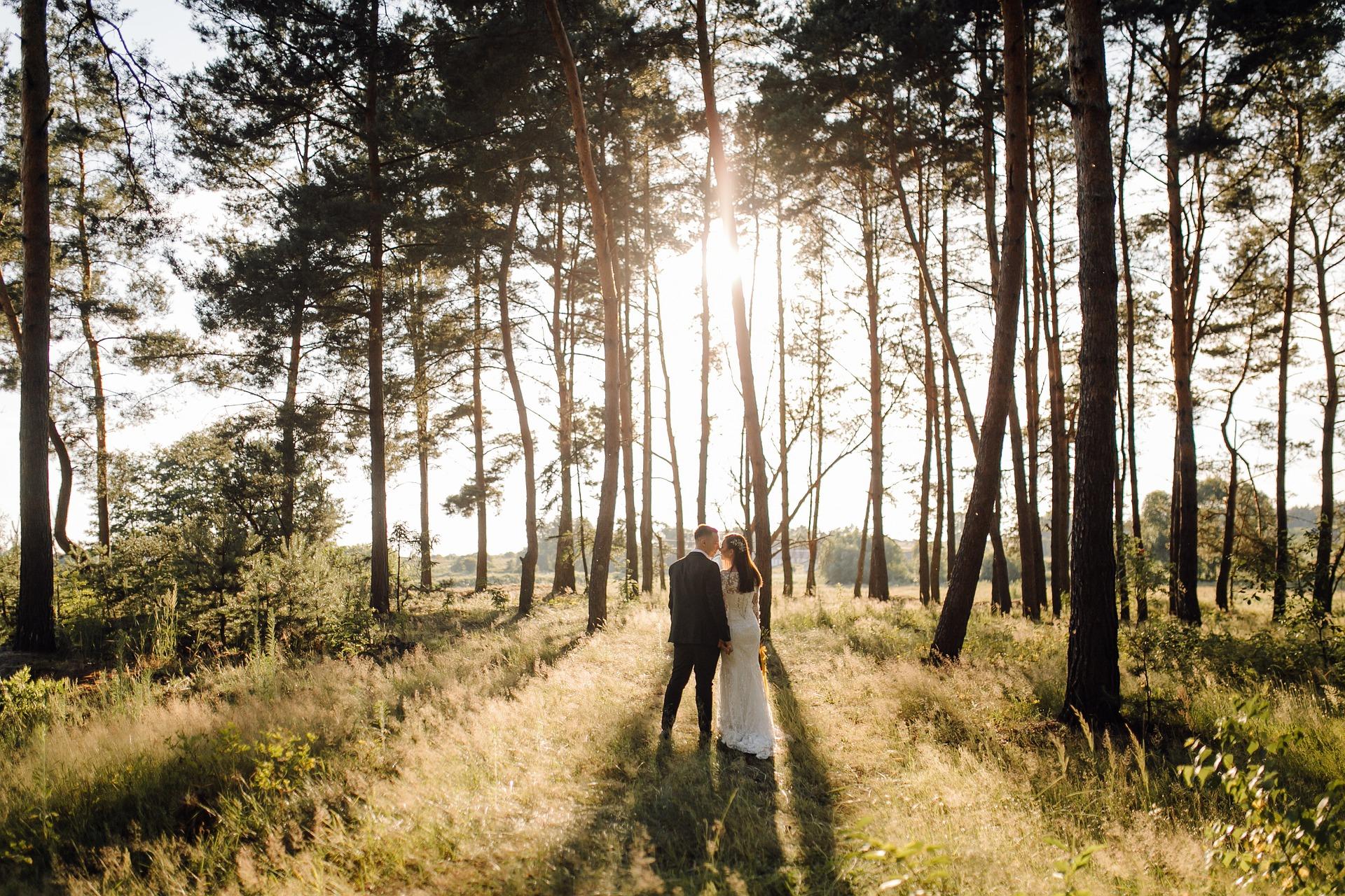 Wake Forest Wedding Venues